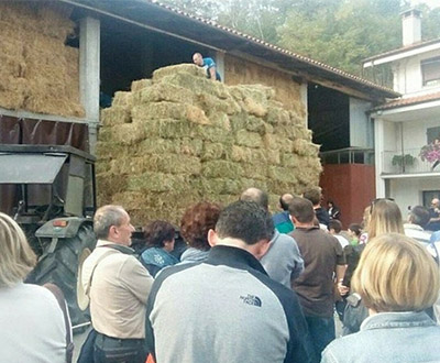 Most hay bales stacked on agricultural trailer
