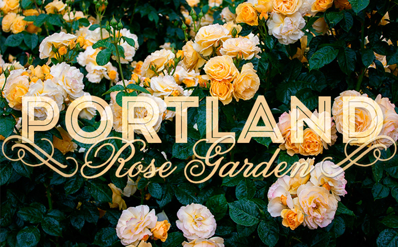World's Influential City of Roses