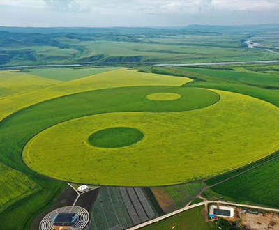 Largest crop field Tai Chi pattern